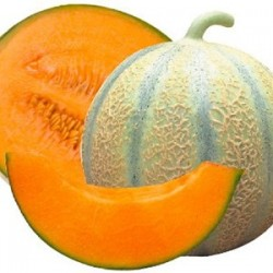 2 Gros Melons (5/6...